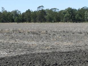 A renowned grain and grazing property - Goondiwindi