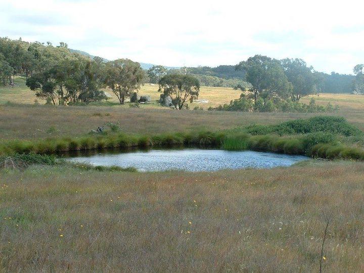 Bundarra, NSW