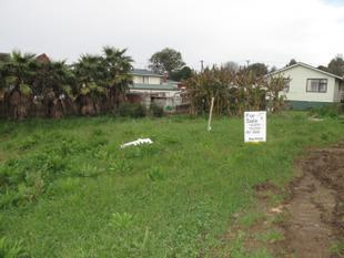 Papatoetoe Section Clearance!! - Papatoetoe