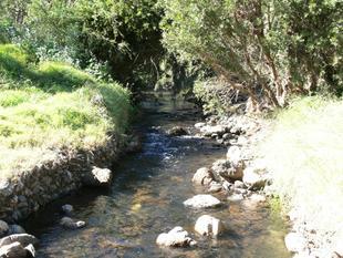 Receivers Sale - England Creek