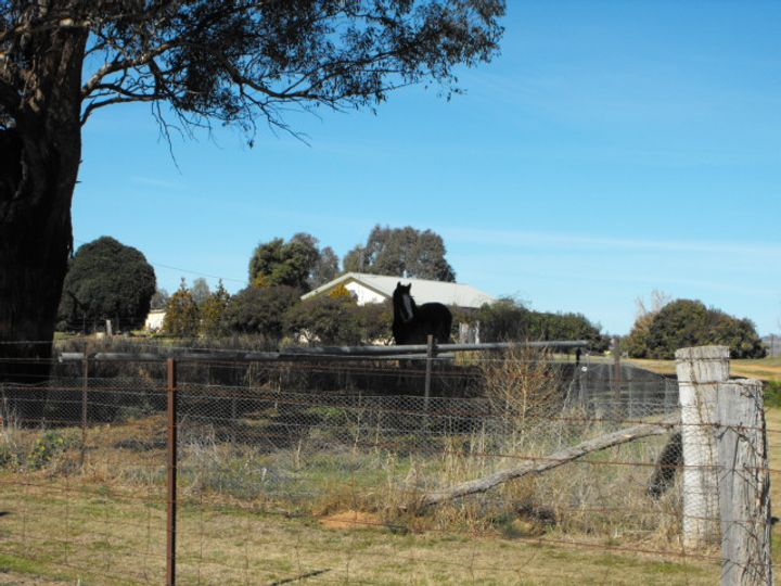 200 Square Road, Canowindra, NSW