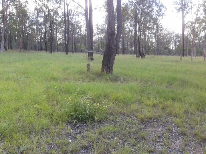 145 Brocklehurst Road, Wattle Camp, QLD