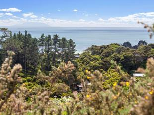 A section with a view - Onetangi