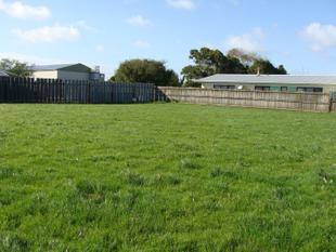 Room to Spread Out - Dargaville