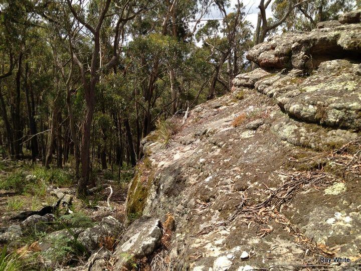 6045 Nerriga Road, Nerriga, NSW