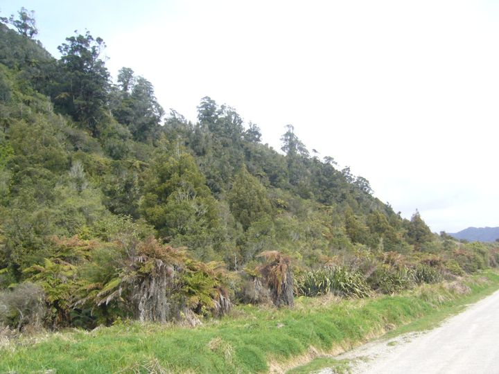 Wangapeka Road, Little Wanganui, Buller District