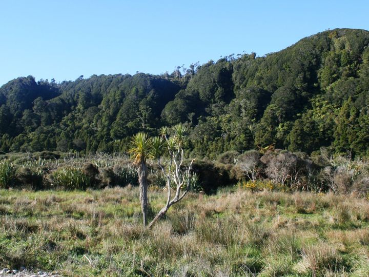 State Highway 67, Karamea, Buller District
