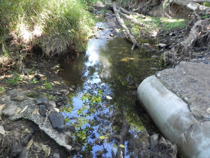 Flagstone creek