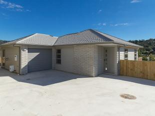 AUCTION ACTION - MUST GO! - Stokes Valley