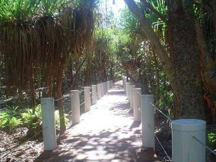 19 Mango Tree Court, Forrest Beach, QLD