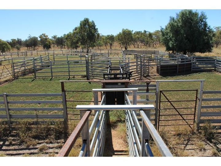 160 Adavale Road, Charleville, QLD