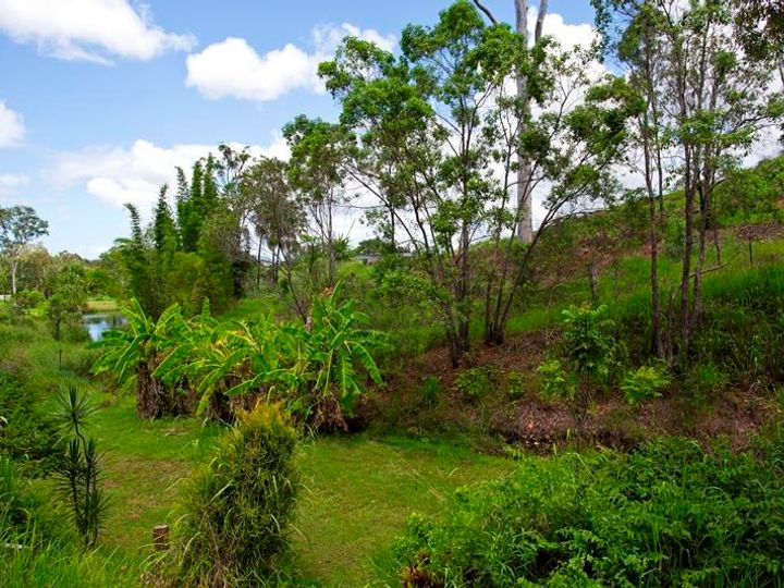 41 Goffages Road, Mount Chalmers, QLD
