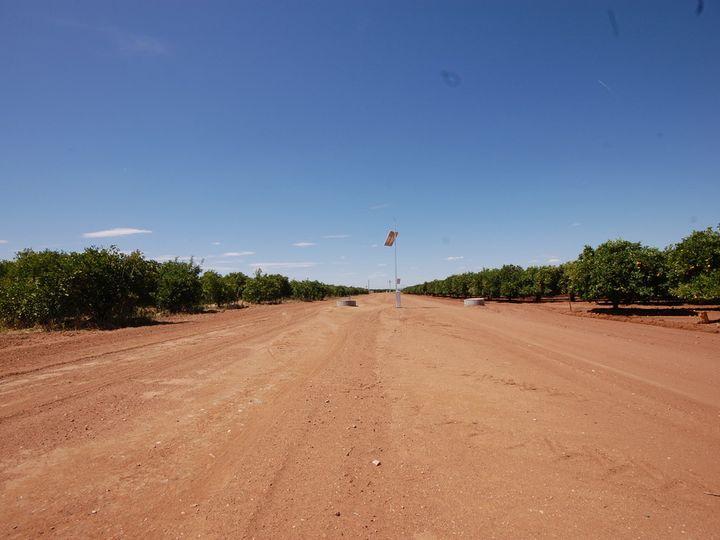 Farm 78 Murray Road, Yoogali, NSW