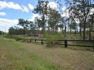 "Owner Says ""Give me an OFFER"" - 10 Acres, Selectively Cleared - Mount Hallen"