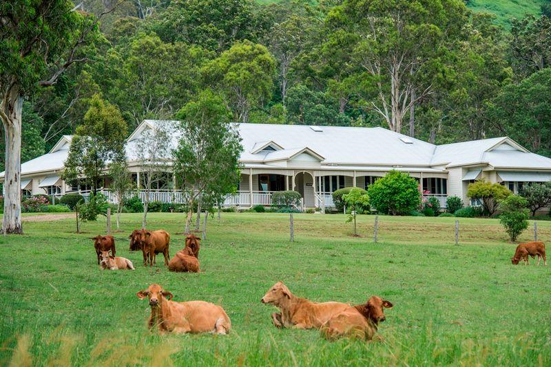 Acreage semi rural sold eerwah vale qld 885 browns creek road