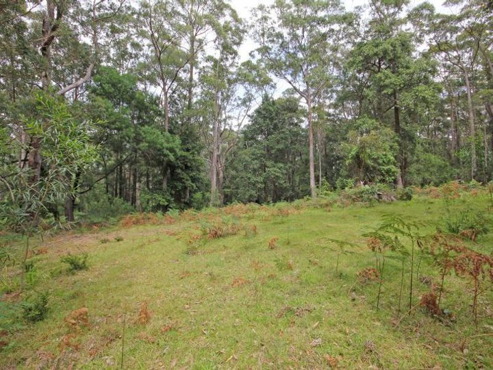317B Little Forest Road, Little Forest, NSW