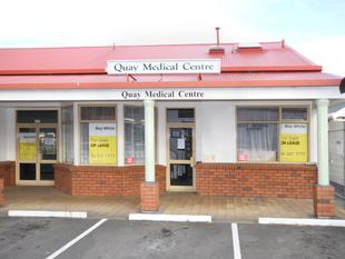 Medical Rooms or Office by Whanganui River - Wanganui City Centre
