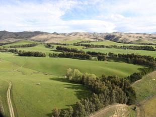GENUINELY FOR SALE... - Hakataramea Valley