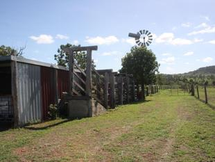 Lifestyle Grazing Block with (almost) Everything! - GOOD WEEK-ENDER - Mundubbera