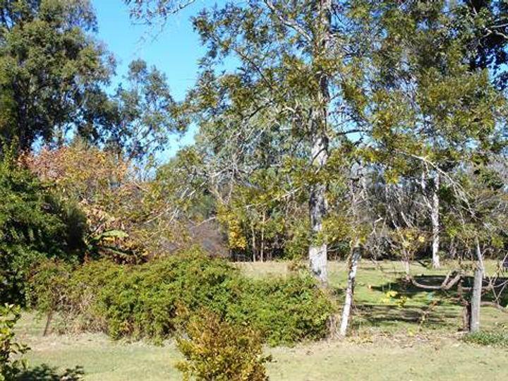 Moore, QLD