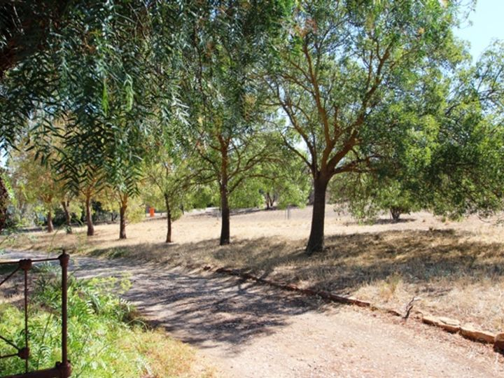Lot 80 Kingston Terrace, Auburn, SA