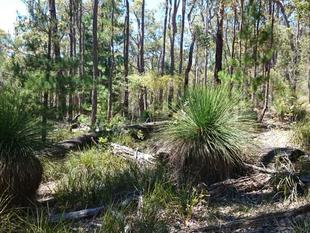 162 ACRES PRIVATE GETAWAY - Nannup