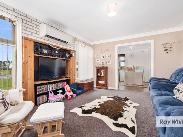 883 Ridgley Highway, Ridgley, TAS