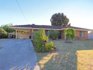Lovely family home situated a big block, Potential future subdivision - Beechboro