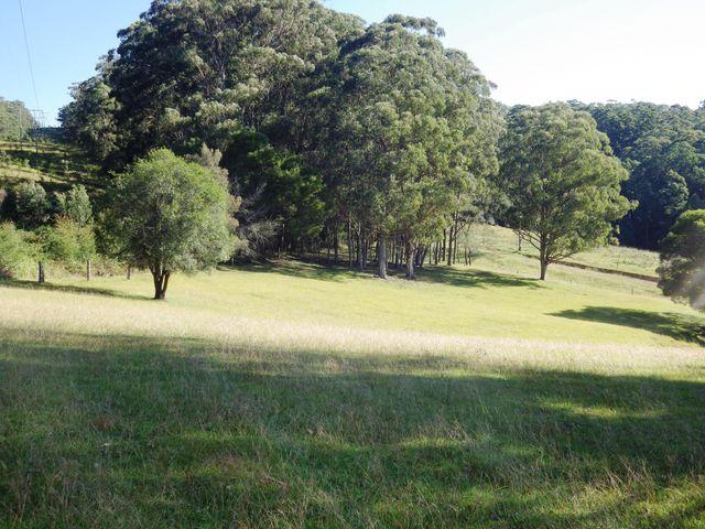 7732 Armidale - Grafton Road, Billys Creek, NSW