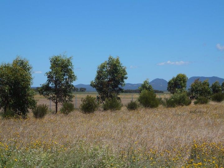 Lot 704 Platypus Road, Hopetoun, WA