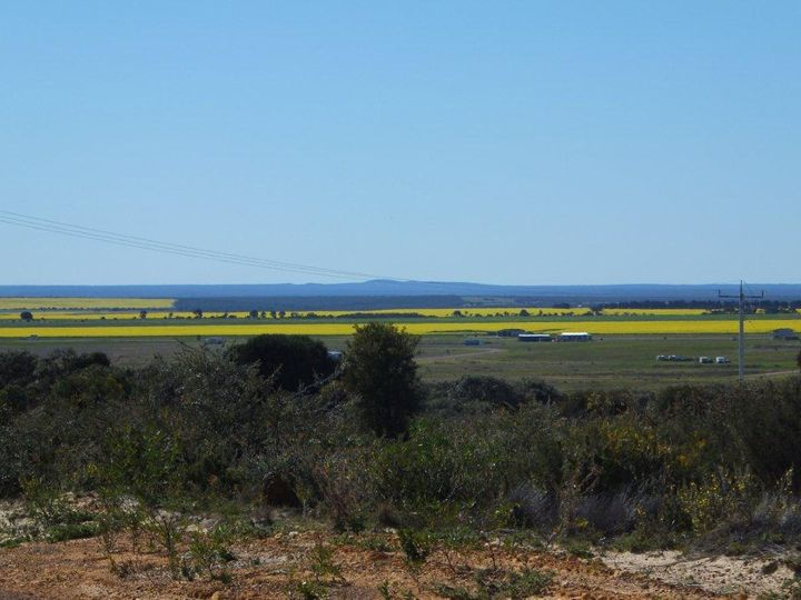 Lot 556 Godenia Way, Hopetoun, WA