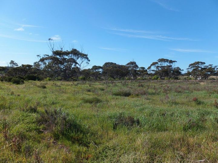 Lot 901 South Coast Highway, Ravensthorpe, WA