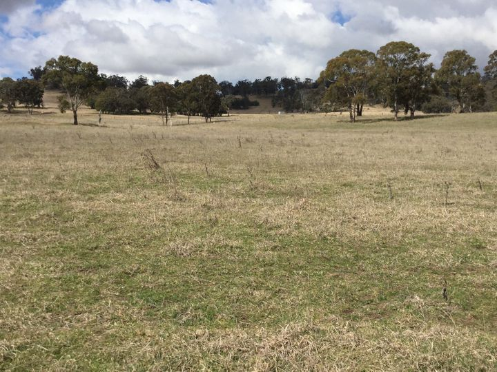 Lot 551 Blue Hills Road, Glen Innes, NSW