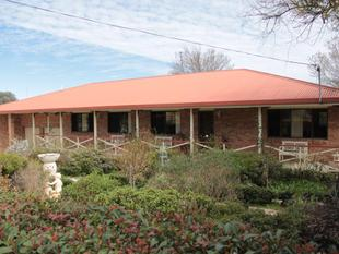 FIT THE WHOLE FAMILY IN - Tenterfield