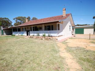 BEAUTIFUL FAMILY HOME-EITHER RENT OR RESIDE!!! - Pingelly