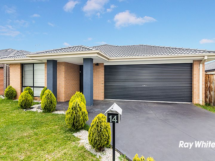 14 Valencia Court, Cranbourne, VIC