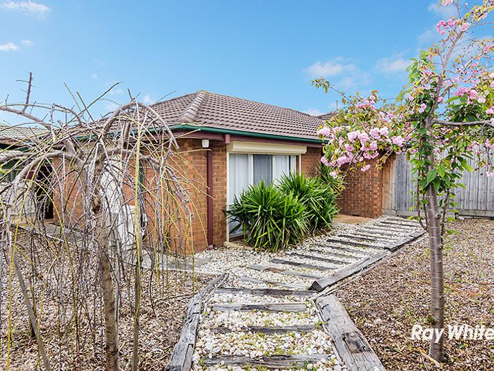 1 Walnut Court, Cranbourne North, VIC