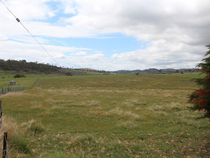 Lot 1 Bellevue Road, Tenterfield, NSW