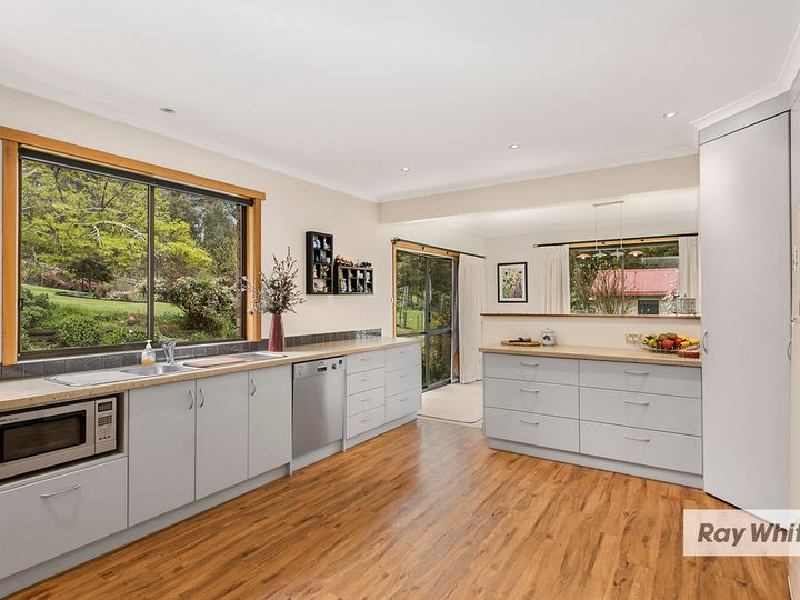 65 Tippetts Lane, Mount Hicks, TAS