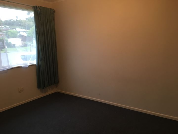 34 Jones Street, Gate Pa, Tauranga City