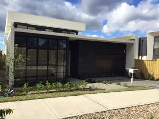 BRAND NEW HOME IN A EXCLUSIVE DHALIA ESTATE! - Kellyville