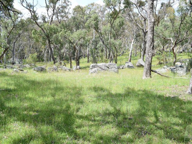 91 Glenambie Devoncourt Road, Uralla, NSW
