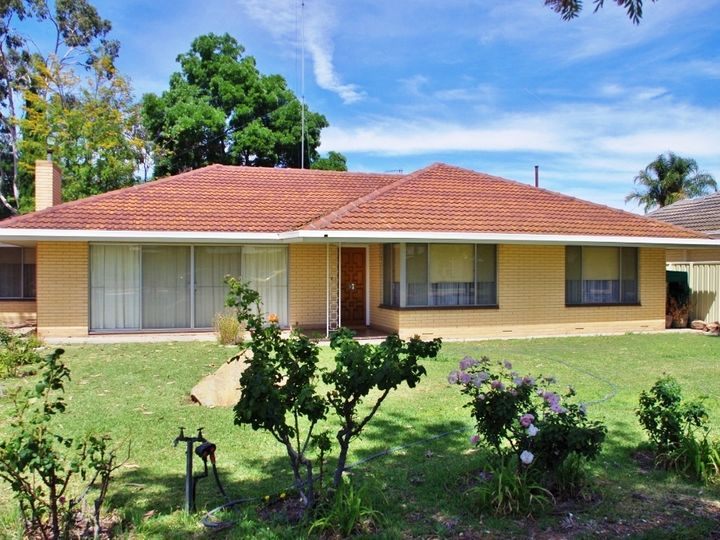 171 Eighteenth Street, Renmark, SA