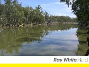 RIVERSDALE Appr.2kms of Absolute Outstanding River Frontage - Deniliquin