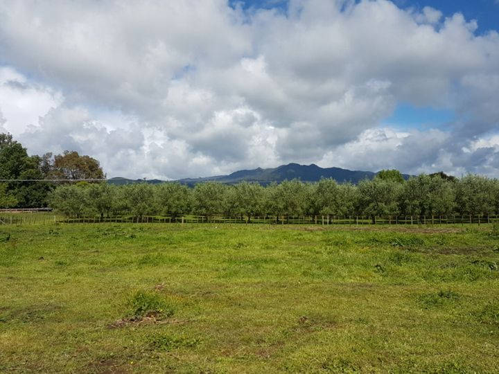 2/854 Frontier Road, Pirongia, Waipa District