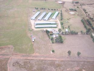 RURAL ENTERPRISE WITH PROVEN RETURNS - Tamworth