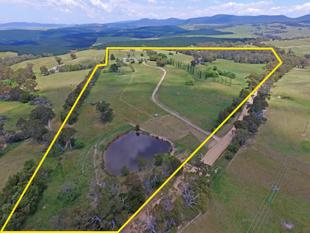 Move to the high country and enjoy good rainfall and productive pastures - Braidwood