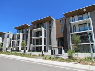 BRAND NEW 2 BEDROOM UNIT AT SHOUT RIDGE, LINDFIELD - Lindfield