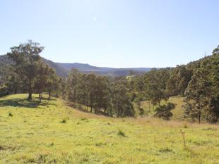 EASTERN FALL GRAZING  -  WONT FIND BETTER VALUE AT APPROX $6500 PER BREEDER AREA - Tenterfield