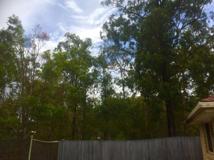 111 brooklands Circuit, Forest Lake, QLD